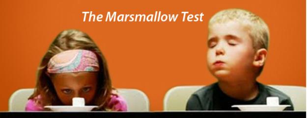 marshmallowtest.jpg