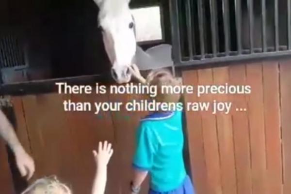 7 boy pony.jpg