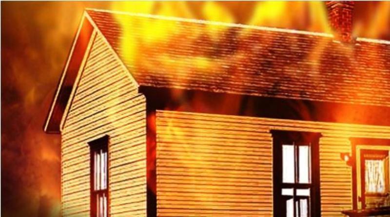 猫が火事から飼い主を救う.JPG