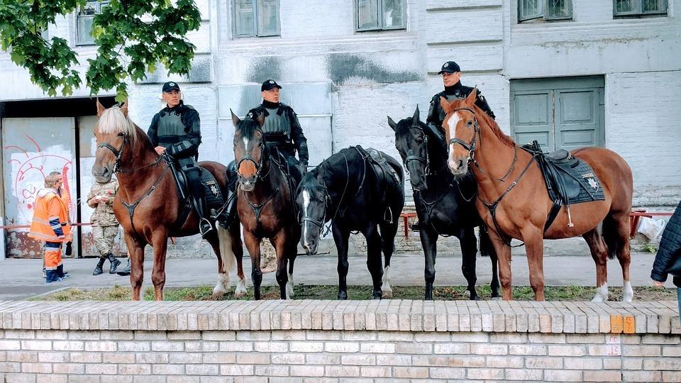 警察と馬.jpg