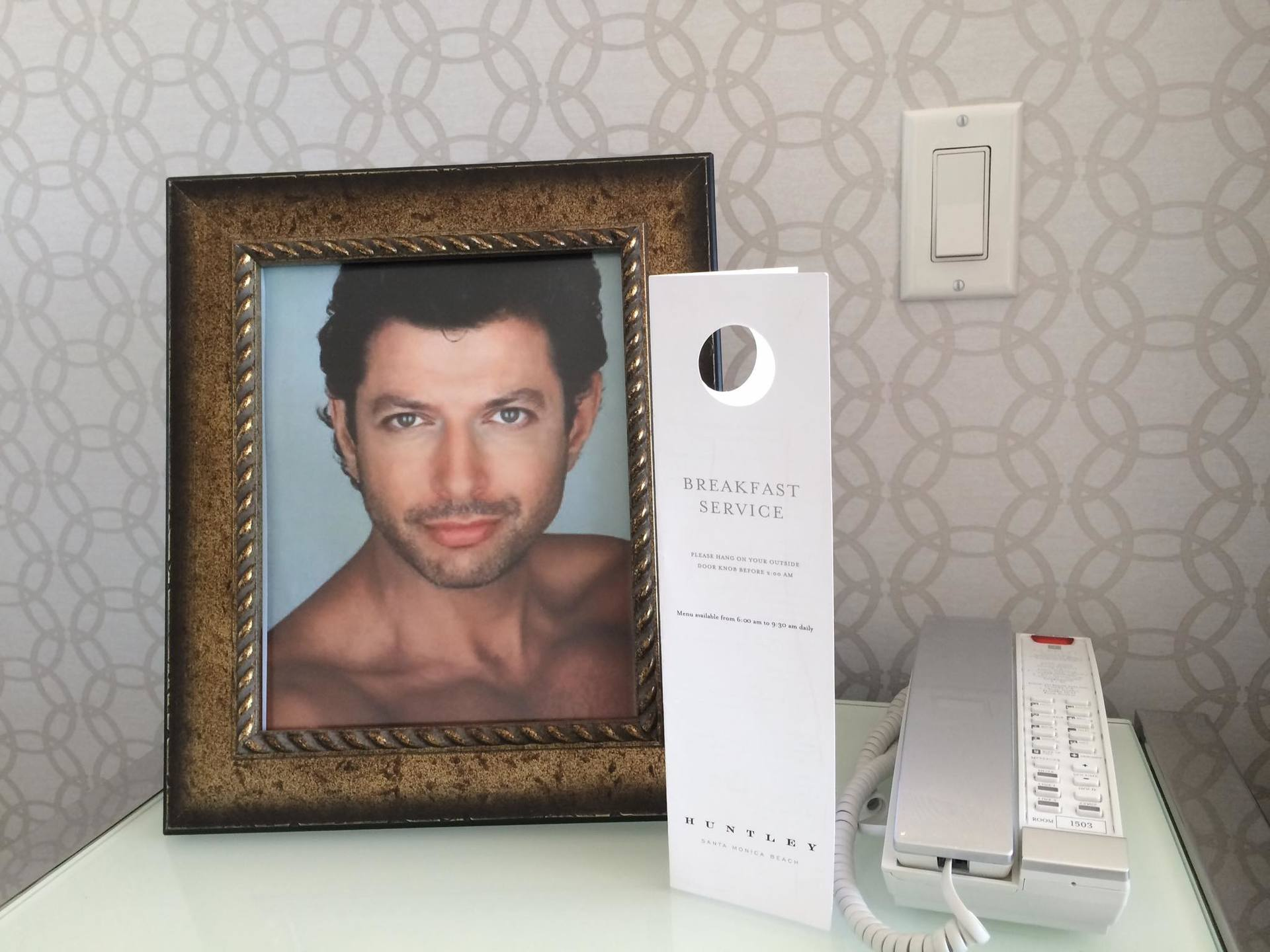 Goldblum's photo in the hotel room.jpg