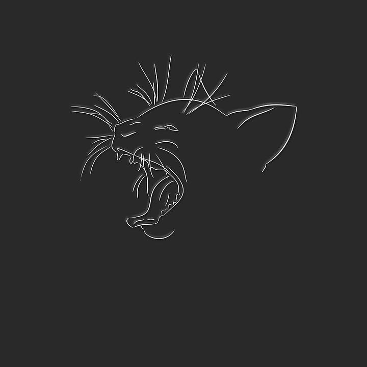 art-cat.jpg