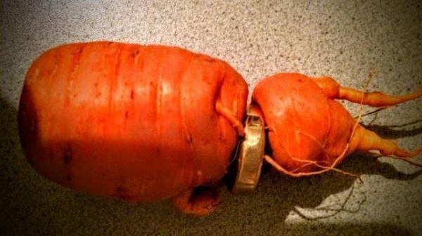 carrot ring.jpg