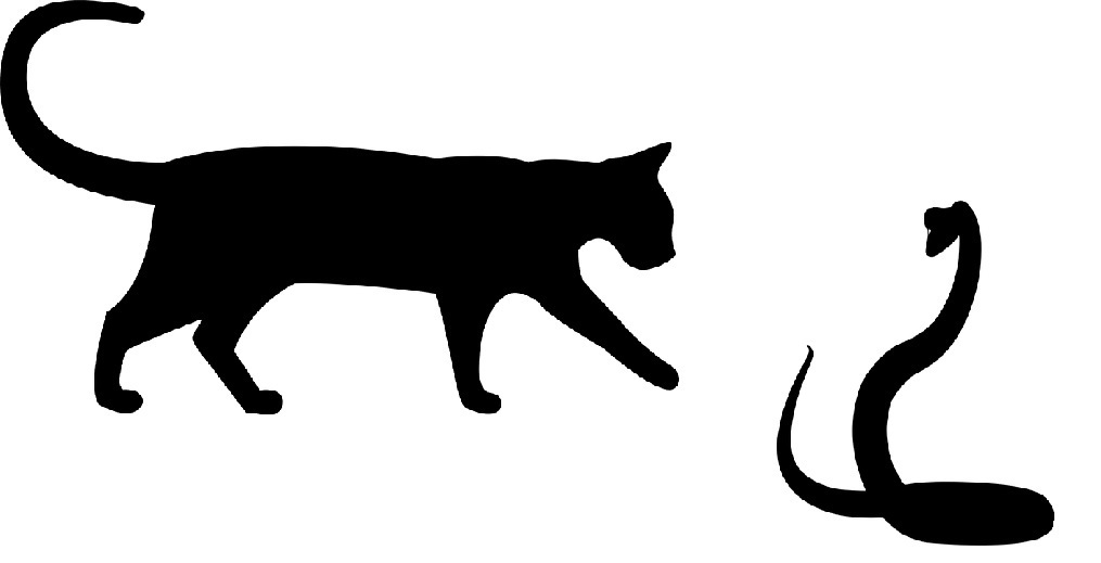 cat-cobra-silhouette.jpg