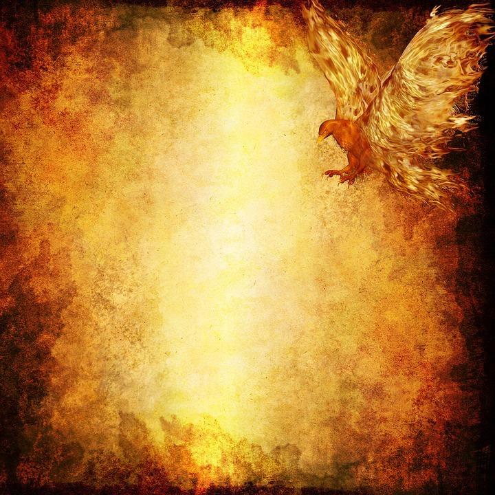 fire bird.jpg