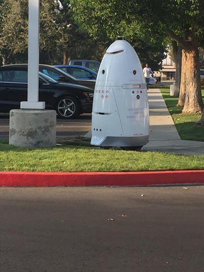 hospita robot.jpg