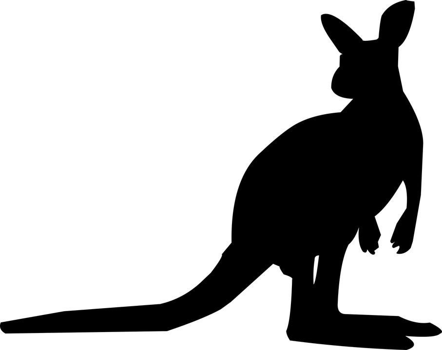 kangaroo-shilhouette.jpg