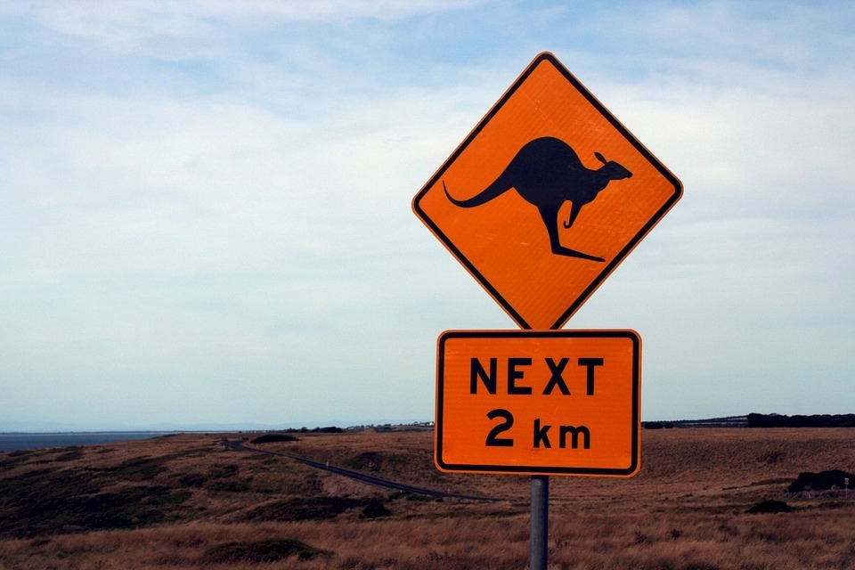 kangaroo sign.jpg