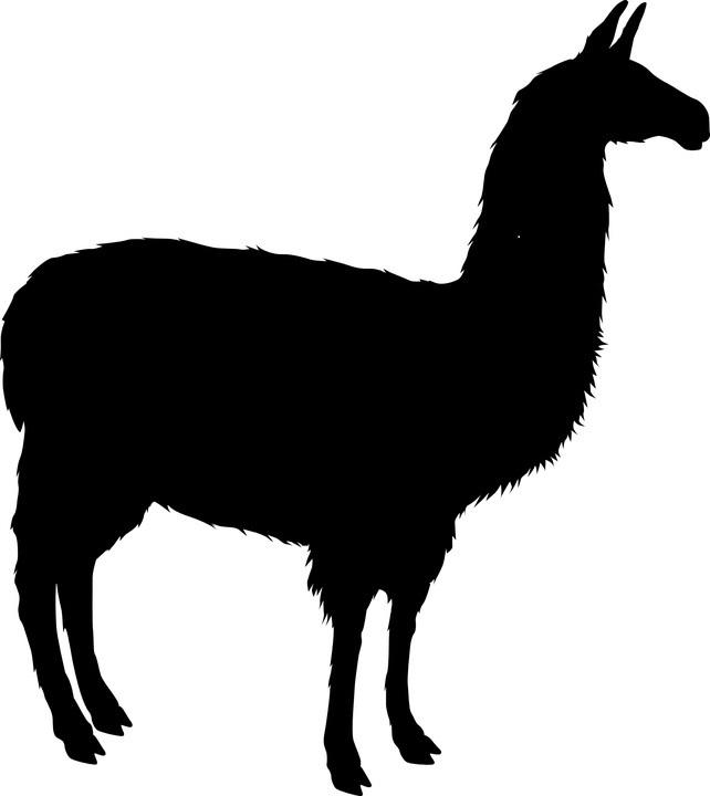 llama-silhouette.jpg