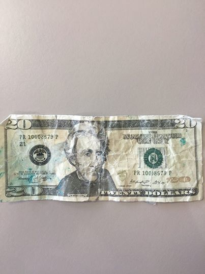 prop 20 dollar bill.jpg