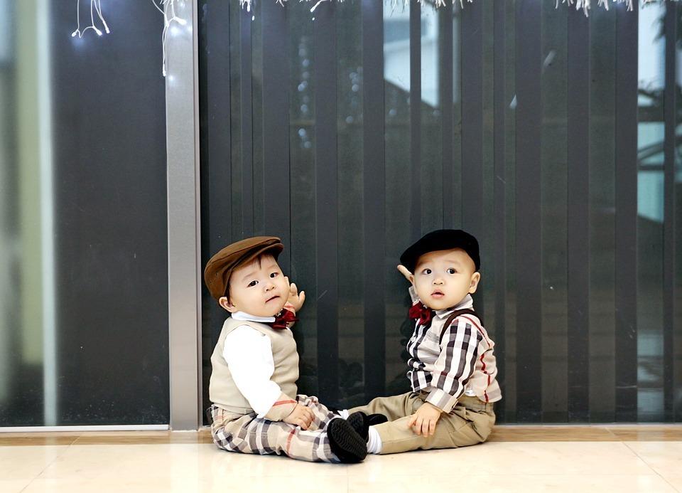 twins-1169067_960_720.jpg